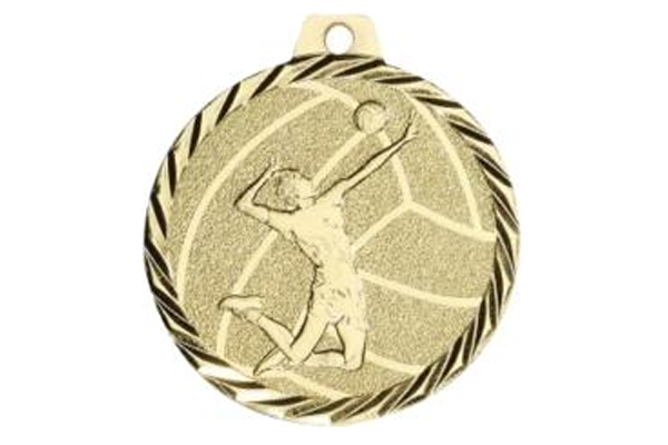 Medaille NZ24D Volleyball Ø 50 mm